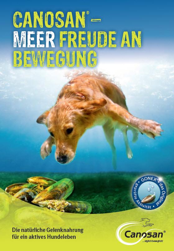 Broschüre zu Canosan® Hund