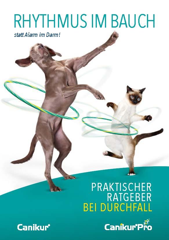 """Tierhalter Broschüre """"Rhythmus im Bauch"""""""