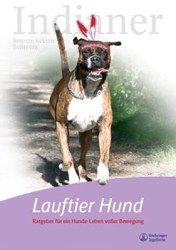 Lauftier Hund