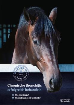 Chronische Bronchitis erfolgreich behandeln