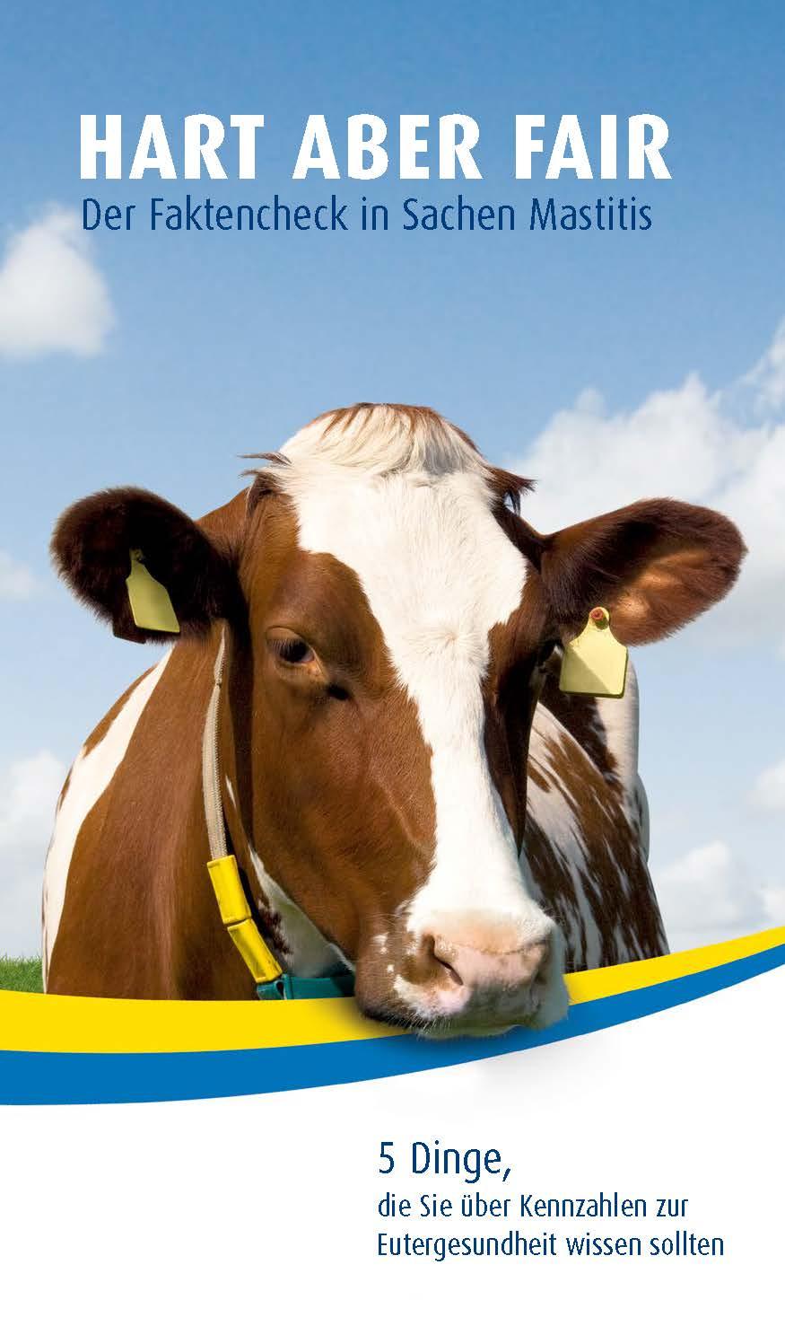 5 Dinge, die Sie über Kennzahlen zur Eutergesundheit wissen sollten