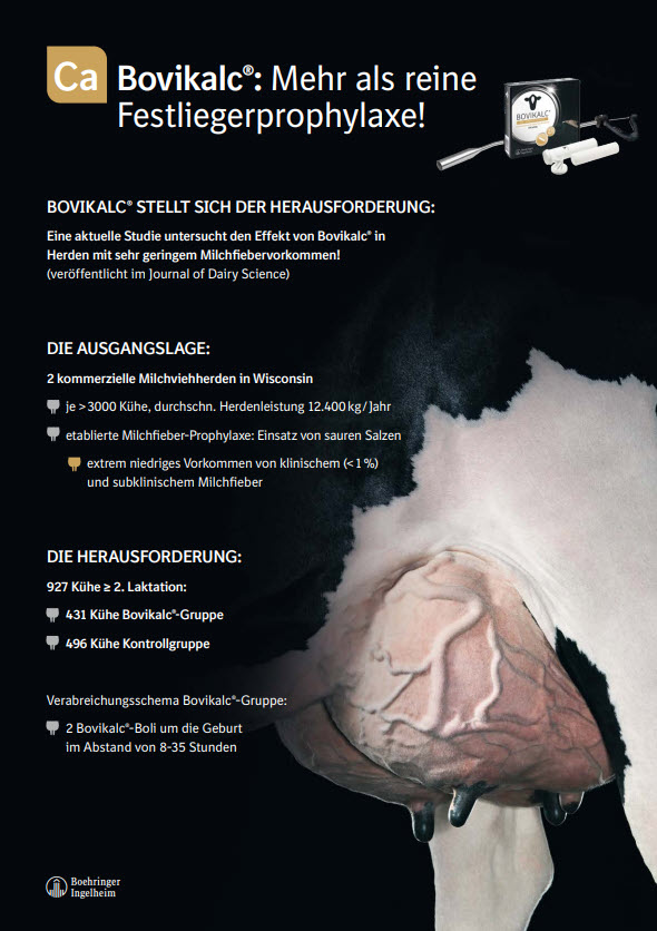 Bovikalc® - mehr als Festliegerprophylaxe!