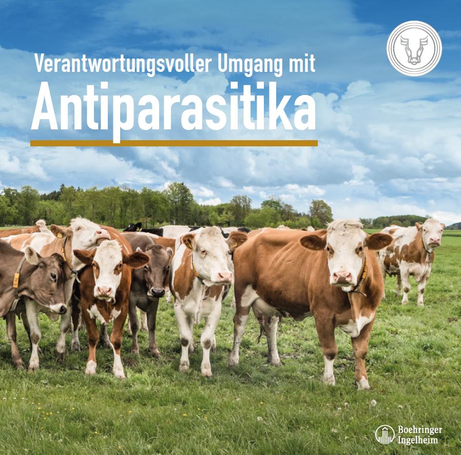 Verantwortungsvoller Umgang mit Antiparasitika