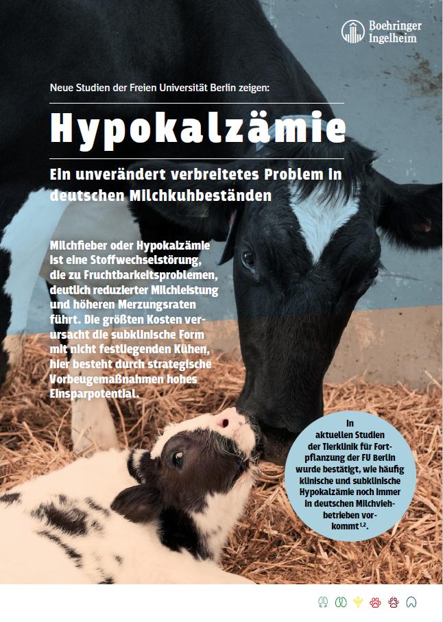 Hypokalzämie | Ein unverändert verbreitetes Problem in deutschen Michkuhbeständen.