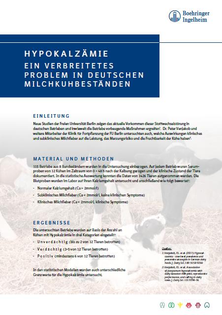 Hypokalzämie | Ein verbreitetes Problem in deutschen Milchkuhbeständen.